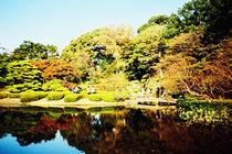 Japanese Garden von Giorgio Giussani