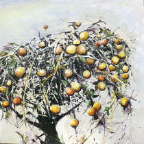 Ein vergessener Apfelbaum von Renée König