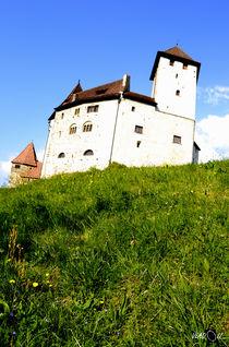 Schloss Gutenberg 4 von Vlado  Franjevic
