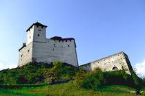 Schloss Gutneberg 3 von Vlado  Franjevic