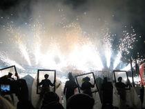 Firework Finale von Elizabeth Marsden