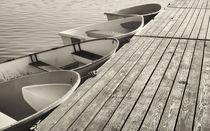 Sepia dinghys. von John Greim