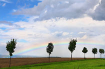 Rainbow by Wolfgang Dufner