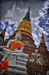 Buddha Ayutthaya Thailand von Gianluca Colombi