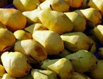Pears by Agnieszka  Grodzka