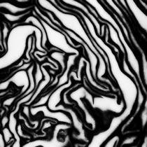 The maze by Jaromir Hron
