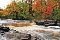 Lower Tahquamenon Falls von Michael Peychich