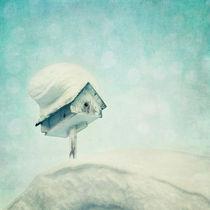 'snowbird's home' von Priska  Wettstein
