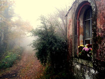 Devotions in the misty wood. 2 von turi-caggegi