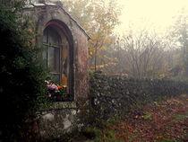 Devotions in the misty wood. von turi-caggegi