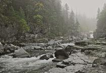 Montana Fog by Michael Peychich
