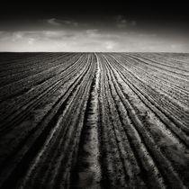 wrinkles by Jaromir Hron