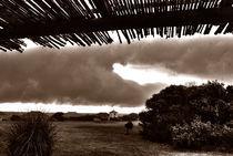 thunderclowds von mariana clotta