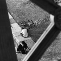Afternoon on Danube von Razvan Anghelescu