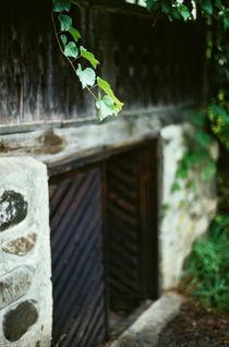 Cellar's Gates von Razvan Anghelescu
