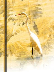 White Heron von Robert Ball