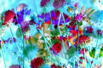 Secret Garden II von Igor Shrayer