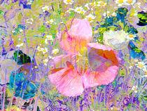 Secret Garden IV von Igor Shrayer