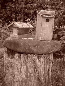 Rustic Bird Houses von Rebecca Ledford