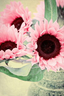 Pink Sunflowers von AD DESIGN Photo + PhotoArt