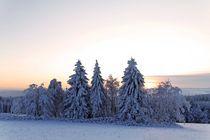 Winterwald und Sonnenuntergang von Wolfgang Dufner