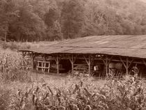 Stilwell Barn in Sepia by Rebecca Ledford