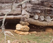Plank and Log Pillar by Rebecca Ledford
