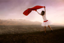 scarlet fly von Diana Kartasheva