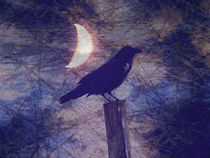 Midnight Crow von Robert Ball