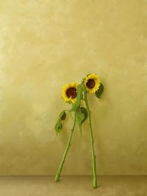 Girasoles von Arturo Delaguardia