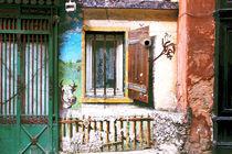 Forsaken House IV by Igor Shrayer