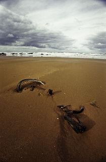 Normandy beach 9 von Razvan Anghelescu