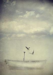 Flight von Sybille Sterk