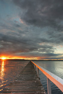 Jetty and sunset over Tuggerah Lake von Mark Lucock