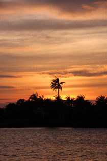 Sunset over Kampong Bay River von Mark Lucock