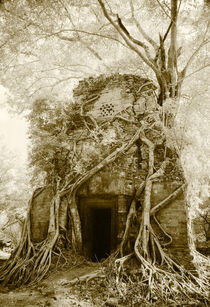 Prasat Pram or 5 Temples at Koh Ker von Mark Lucock
