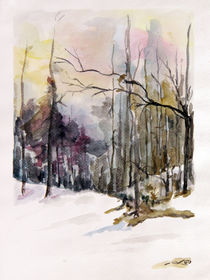 Winter silence von aquarellka