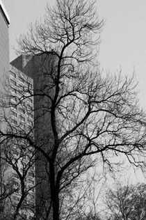 Invierno en la ciudad by Ricardo Anderson
