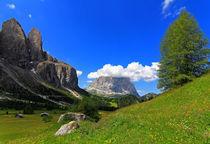 Blumenwiese in den Dolomiten von Wolfgang Dufner