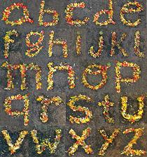 Fruit alphabet  by vlad