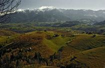 Countryside 3 von Razvan Anghelescu