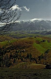 Countryside 2 by Razvan Anghelescu