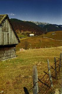 Countryside 1 by Razvan Anghelescu