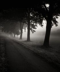 Autumn by Jaromir Hron
