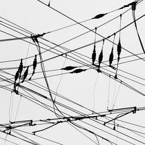 Electric web by Jaromir Hron