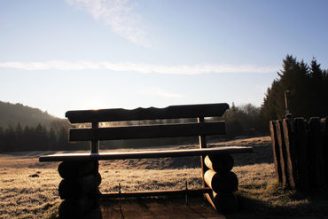 Bench-in-sunnlight