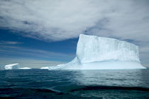 Ice Bergs off of the southern tip of South Georgia island von Danita Delimont