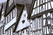 Half timbered buildings by Danita Delimont