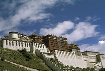 Potala Palace by Danita Delimont