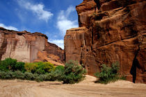 Canyon de Chelly National Monument by Danita Delimont